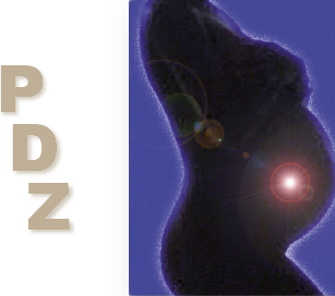 Logo Pränataldiagnostisches Zentrum PDZ